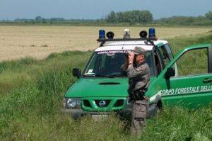 Concorsi Pubblici: 30 Guardie Forestali a tempo indeterminato