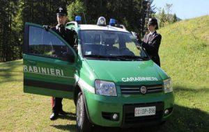 Concorsi Carabinieri Forestali, necessarie 1.500 assunzioni, ecco le ultime novità