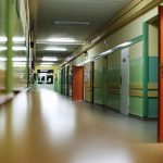 Scuola: dal 2020-2021 il Bonus Merito, potrà essere suddiviso tra docenti e personale ATA